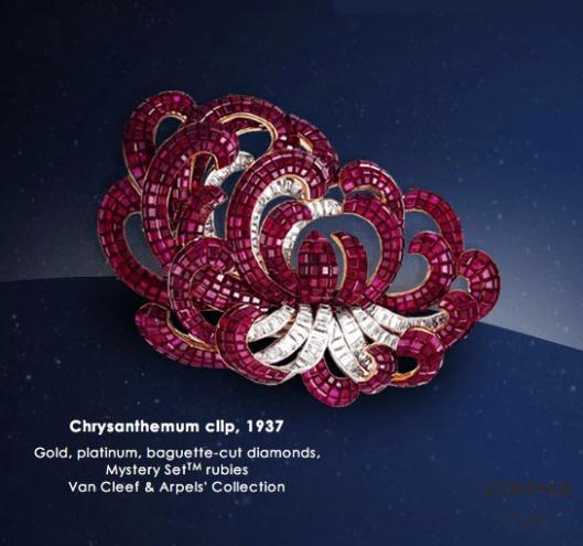 Chrysanthemum clip